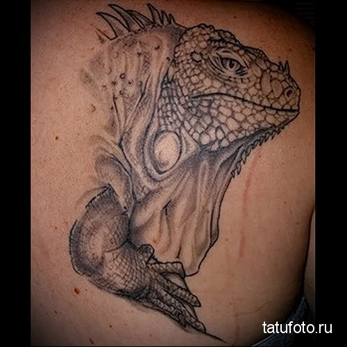 Reptiles in the tattoo 7