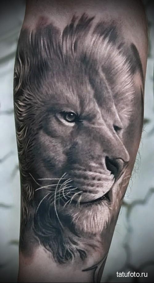 Tattoo animal predators 2