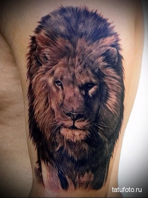 Tattoo animal predators  34 23423 24