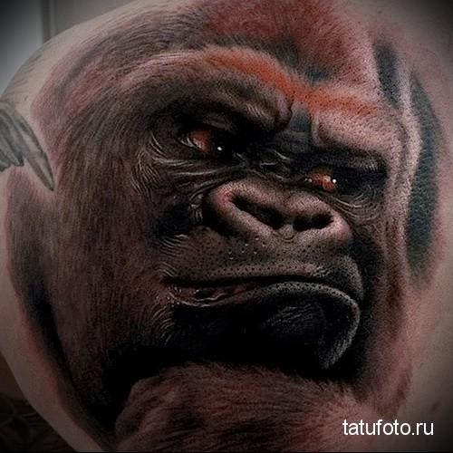 Tattoo animal predators 345 345 24 134 2