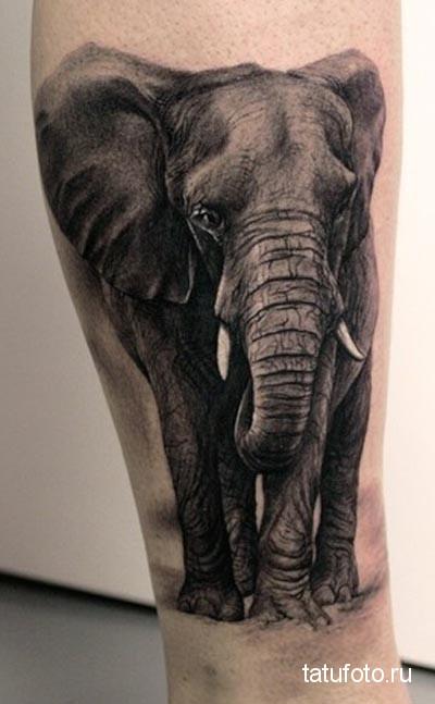 tattoo on his leg animals 4