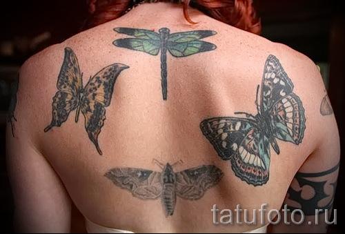 Тату насекомые - бабочки и мотыльки на спине