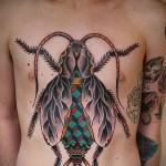 Тату насекомые - большая татуировка на торсе мужчины - цветная работа