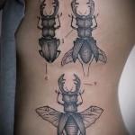 Тату насекомые - жук олень на боку у девушки - жук с рогами