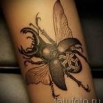 Тату насекомые - жук скоробей на руке