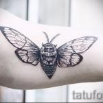 Тату насекомые - черный мотылек на руке у девушки