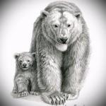 Эскиз тату медведь 13