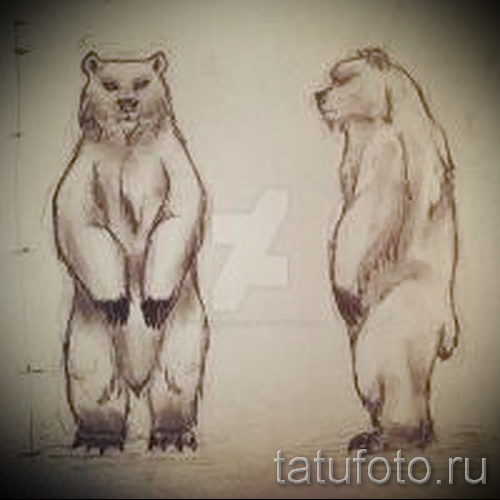 Эскиз тату медведь 40