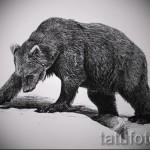Эскиз тату медведь 53