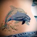 Тату дельфин выпрыгивает из воды