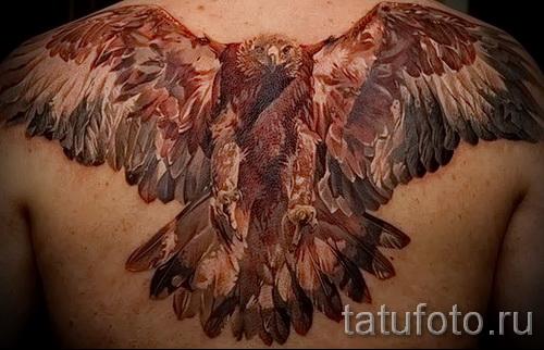Тату орел в броске - вариант на спину