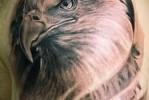Тату орел и шрамы – вариант на плече у мужчины