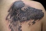 Орел в тату на лопатке для парня