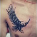 Тату орел на правой части груди молодого парня