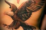Тату орел – на спину
