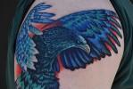 Тату орел – цветной вариант на плече