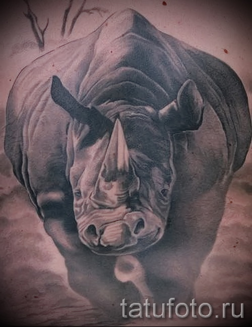 Фото пример тату носорог - вариант с бегущим животным в атаке