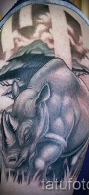 Фото пример тату носорог – красивая тату на плече и руке
