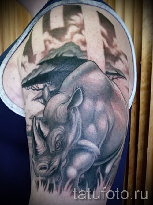 Фото пример тату носорог - красивая тату на плече и руке