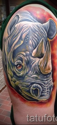 Фото пример тату носорог – на правом плече у мужчины