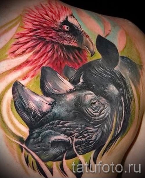 Фото пример тату носорог - цветная татуировка на лопатке