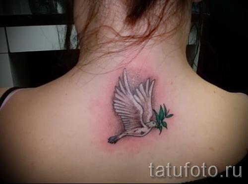 Фото тату голубь белого цвета с веточкой у девушки на спине ниже шеи
