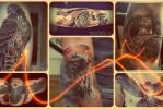 Что значит сокол в татуировке – примеры на фото
