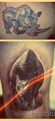 Что значит тату носорог – примеры на фото