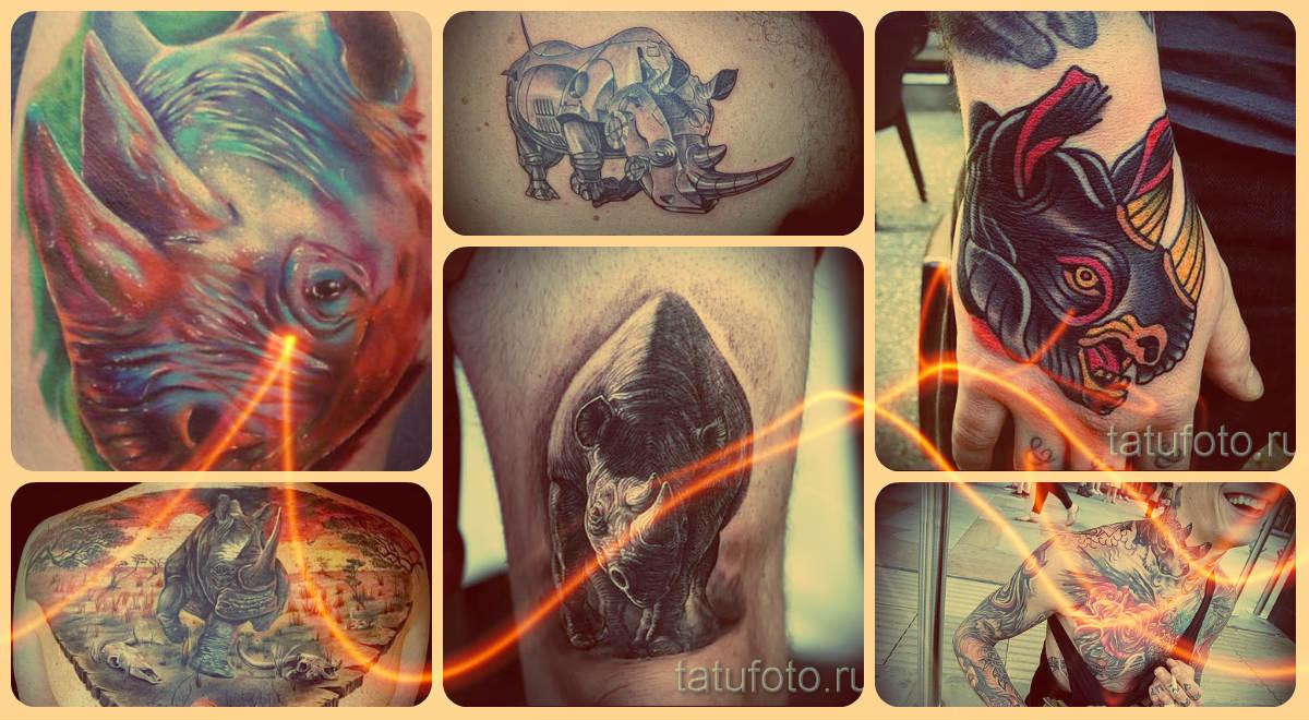 Что значит тату носорог - примеры на фото