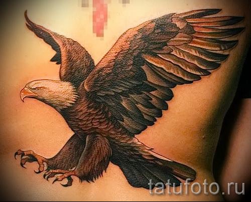 Тату орел - на спину