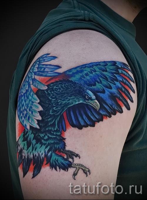 Тату орел - цветной вариант на плече
