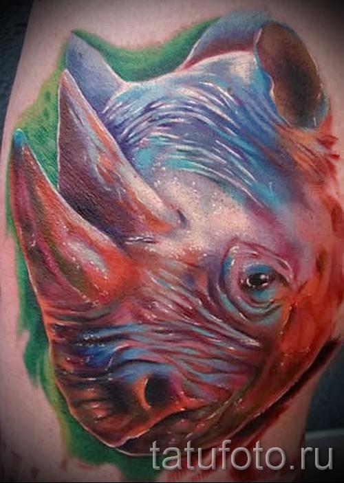Фото пример тату носорог - интересный вариант