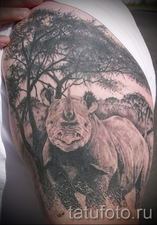 Фото пример тату носорог - на плече и руке