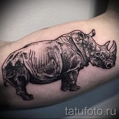 Фото пример тату носорог - реалистичная татуировка на руку