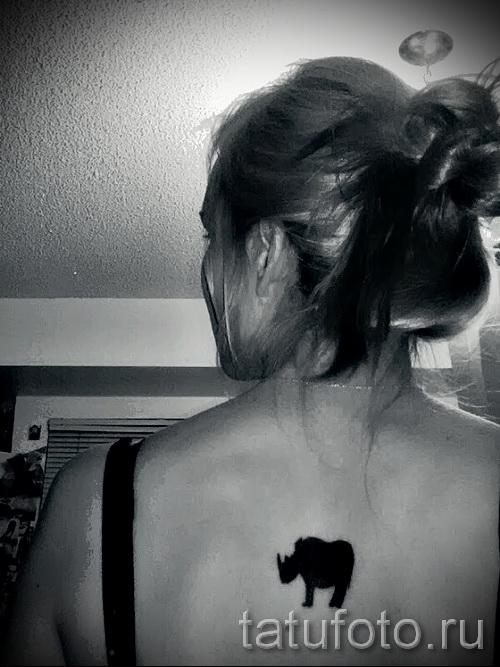 Фото пример тату носорог - черная маленькая тату на спину для девушки