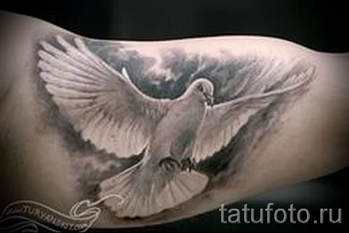Фото тату голубь - на бицепсе