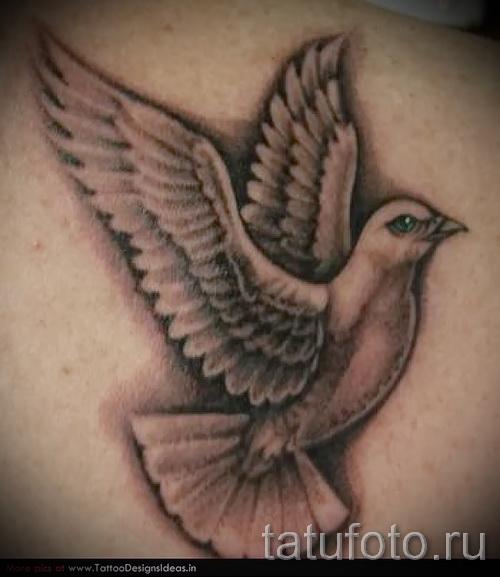 Фото тату голубь с зелеными глазами