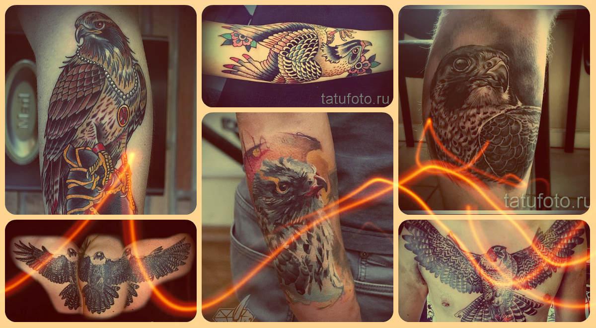 Что значит сокол в татуировке - примеры на фото