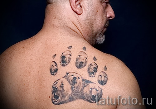 Тату лапа медведя пример на фото - много медведей - тату на правой лопатке у мужчины