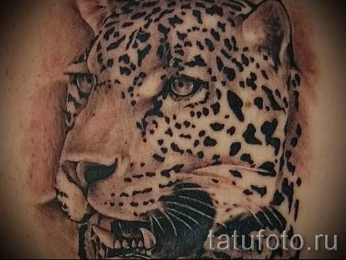 Фото тату барс - картинный рисунок морды