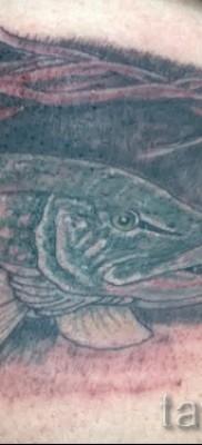 Фото тату щука – вариант с рыбой в убежище