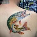 Фото тату щука - цветная татуировка на лопатке у мужчины