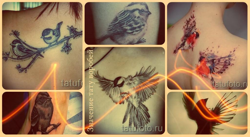 Значение тату воробей - примеры готовых татуировок на фотографиях