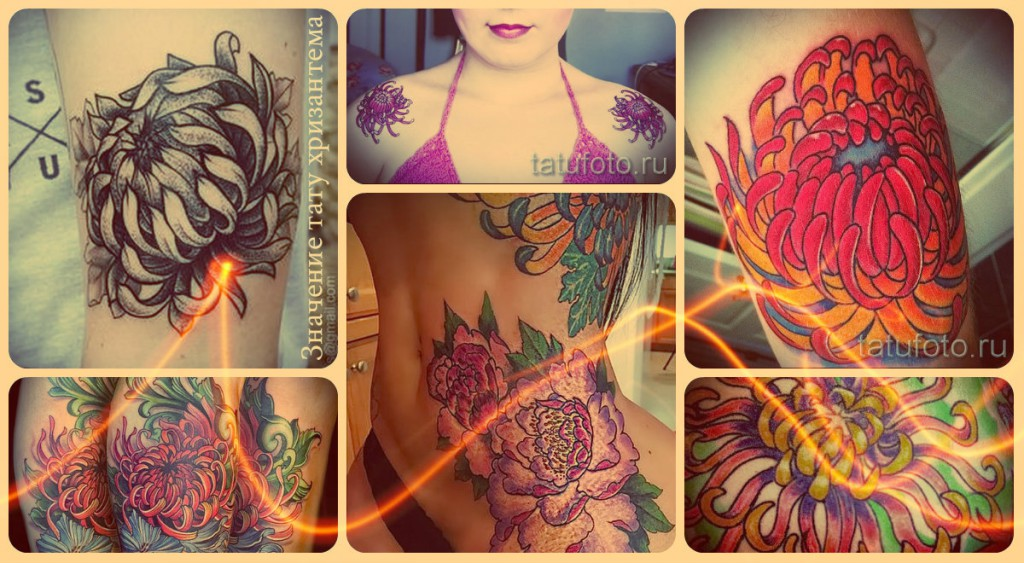 Значение тату хризантема - варианты готовых татуировок на фото