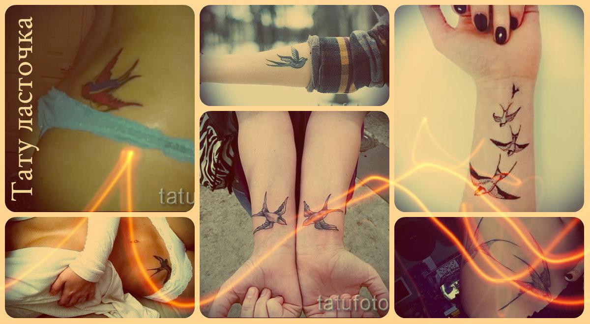 Тату ласточка – фото лучших татуировок для женщин и мужчин - прикольные варианты