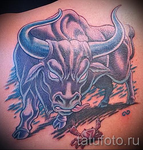 Фото готовой тату знак зодиака телец 0 бык сражается с крабом