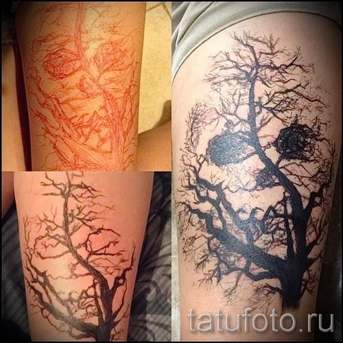 Фото тату дерево - рисункb для тату 09122015 № 033