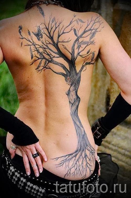 Фото тату дерево - рисункb для тату 09122015 № 043