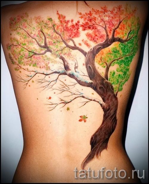 Фото тату дерево - рисункb для тату 09122015 № 054