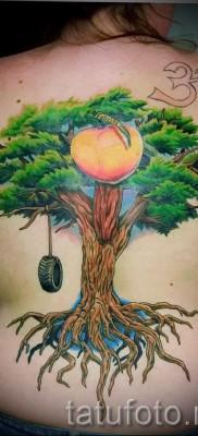 Фото тату дерево – рисункb для тату 09122015 № 093